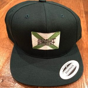 Other - NEW - Absolut Extrakt Snapback Hat
